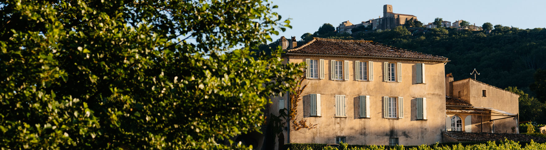A house in a vineyard of barbeyrolles vineyard, Gassin, Frence