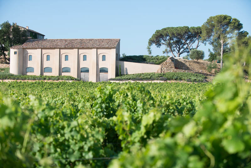 green rows of grape growing with vineyard house on a mountain of barbeyrolles vineyard in France